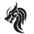 Dragon Security LLC